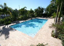 Custom Pools and Remodeling