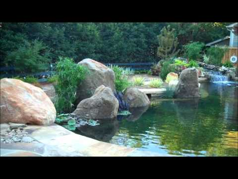 Natural Swimming Pool by The Clearwater Company