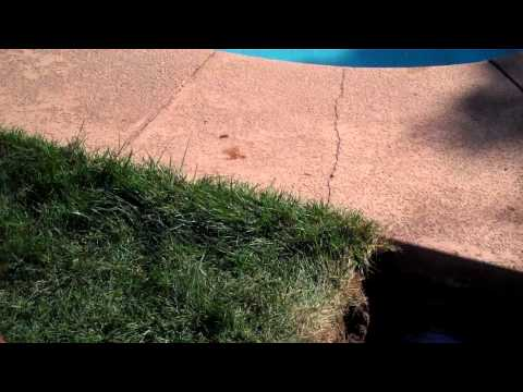 Fixing a plumbing leak in a pool